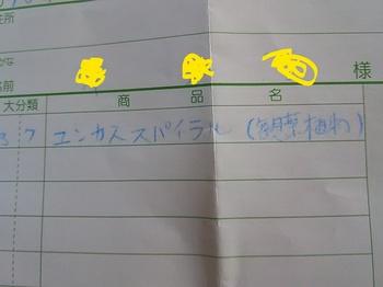 DSC_1712_LI.jpg